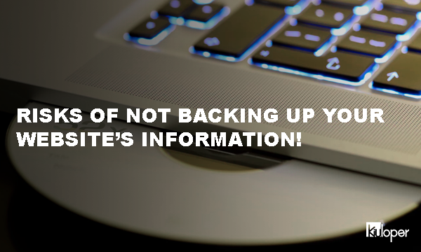 Risk of losing your website information